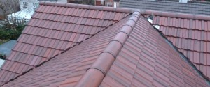 Roof 17